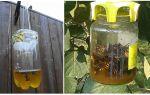 Инструкция по применению жидкого средства от клопов «примадид»
