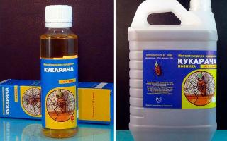 «кукарача» — инструкция по применению препарата